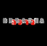 Logo IMW20 BRACA.png
