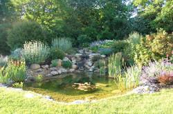 Bassin d'ornement
