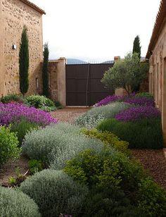 Jardins méditerranéens : jardins sans arrosage