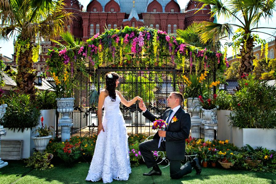 профессиональный фотограф на свадьбу