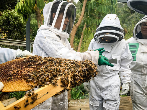 Introduction to Backyard beekeeping workshop 2020 DATES