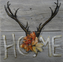 home antlers3