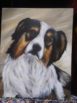 dog portrait2