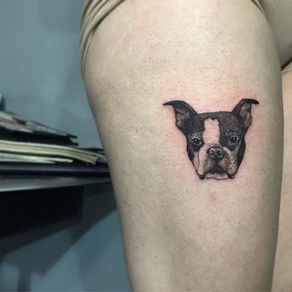 Rip to Jake the Boston terrier  your mom