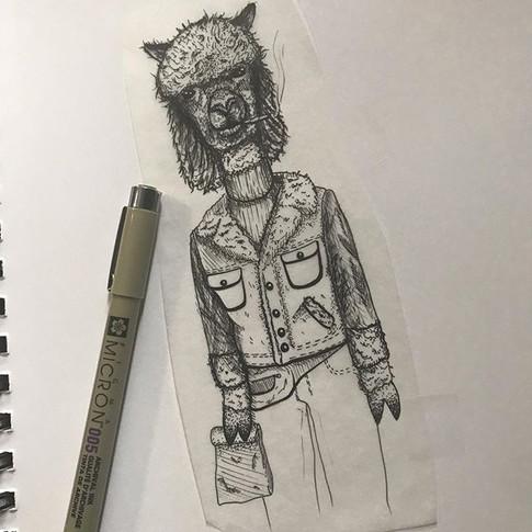 Shaggy 70s alpaca - Oct 2019