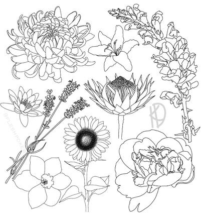 Floral Flash