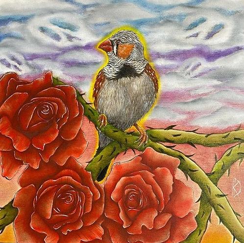 Zebra Finch & Roses