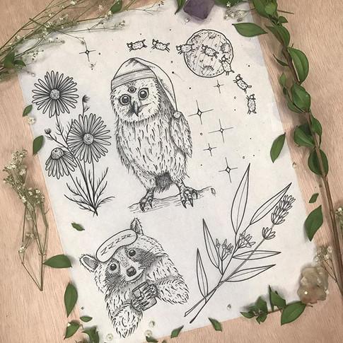 ✨🌙Night time flash🌙✨ Nov-2019