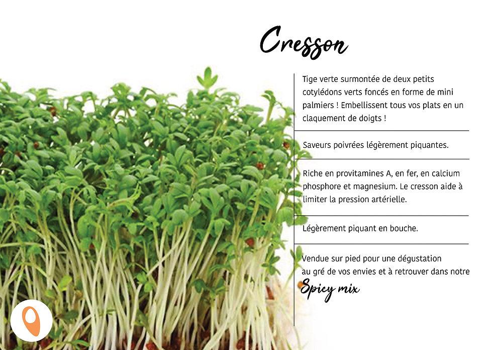 10 Cresson.jpg