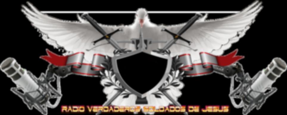 BANER VSDJ WEB  (PNG).png