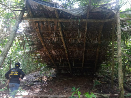 Polícia e Funai flagram garimpo e extração de madeira em torno de terra indígena de RO