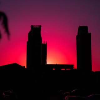 Sunset Palms by Lerr