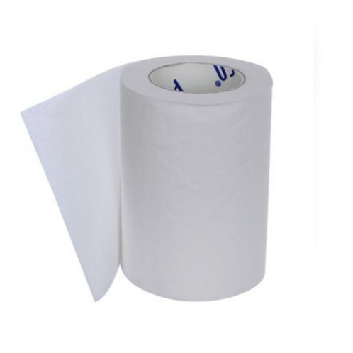 Paseo Tissues Toilet Roll 2 Ply - 100 Pulls, 9.9X10 cm