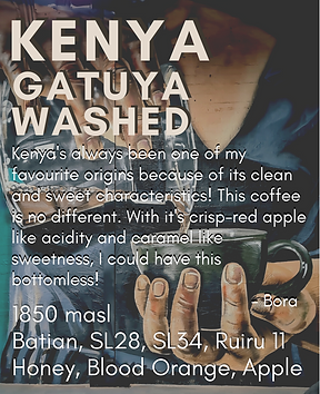 guest coffee page (1).png