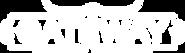 GCT Logo_White_Transparent Background.pn