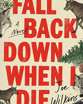 Fall-Back-Down_book-cover_cc-by.jpg