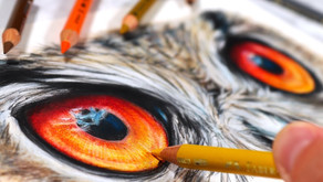 How to Blend Coloured Pencils with Solvent