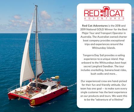 REDCAT Website advertising June 2021.png