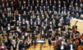 Verdi Orchestral group 2019.jpg