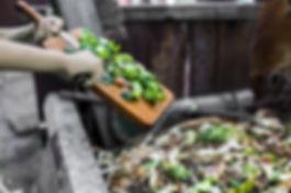 déchets-cuisine (5).jpeg