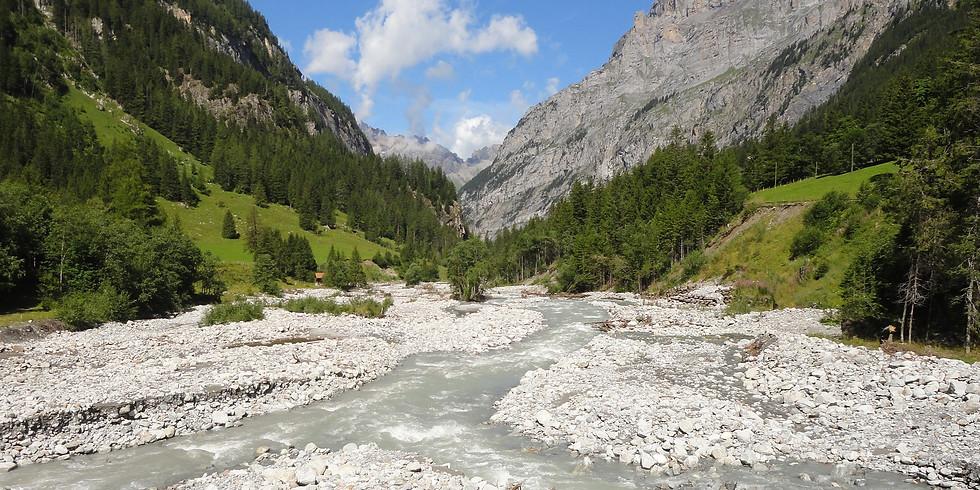 Pflanzenwanderung in den Alpen #2
