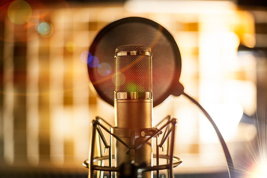 Tonstudio Stuttgart - Das Gorilla Tonstudio ist ein Studio der neuen Generation. Songs & Alben aufnehmen in High End Qualität.  Durch die Verbindung von Analog- und Digitaltechnik lassen sich alle Soundvorstellungen auf höchstem Niveau verwirklichen. Der Regie- und Aufnahmeraum wurde von unserem Akustik-Ingenieur vermessen und mit Basotect® Elementen ausgebaut. So garantieren wir für trockene, professionelle Aufnahmen.    Der Besitzer und Geschäftsführer von Gorilla Tonstudio ist Master Mike.  Er wurde mit mehreren Awards für seine Produktionen ausgezeichnet.
