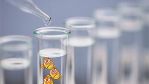 Un potentiel vaccin contre le virus du SRRP agrémenté de la toxine cholérique: réaction surprenante