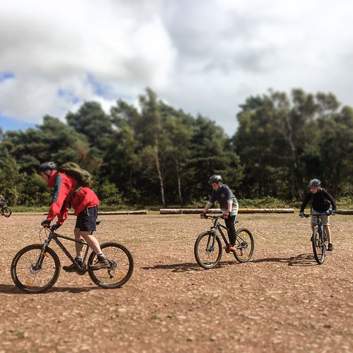 Mountain Biking Shaftesbury