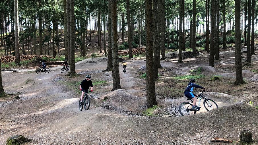 Mountain Biking in Dorset