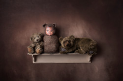 bear-shelf-2-download-Recovered