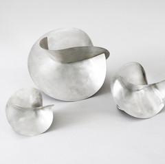 carambolas prata branca 2.jpg
