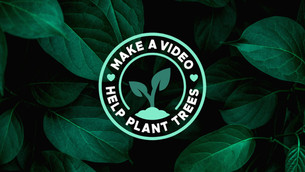 We Planted 100,000 Trees, Thanks to You!