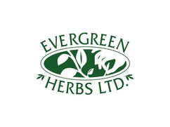 evergreen herbs.jpg