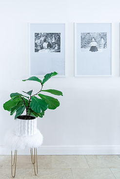 Ann Ueno - Frames-10.jpg