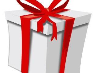 Profitez des fêtes de fin d'année pour offrir des séances de coaching individualisées.