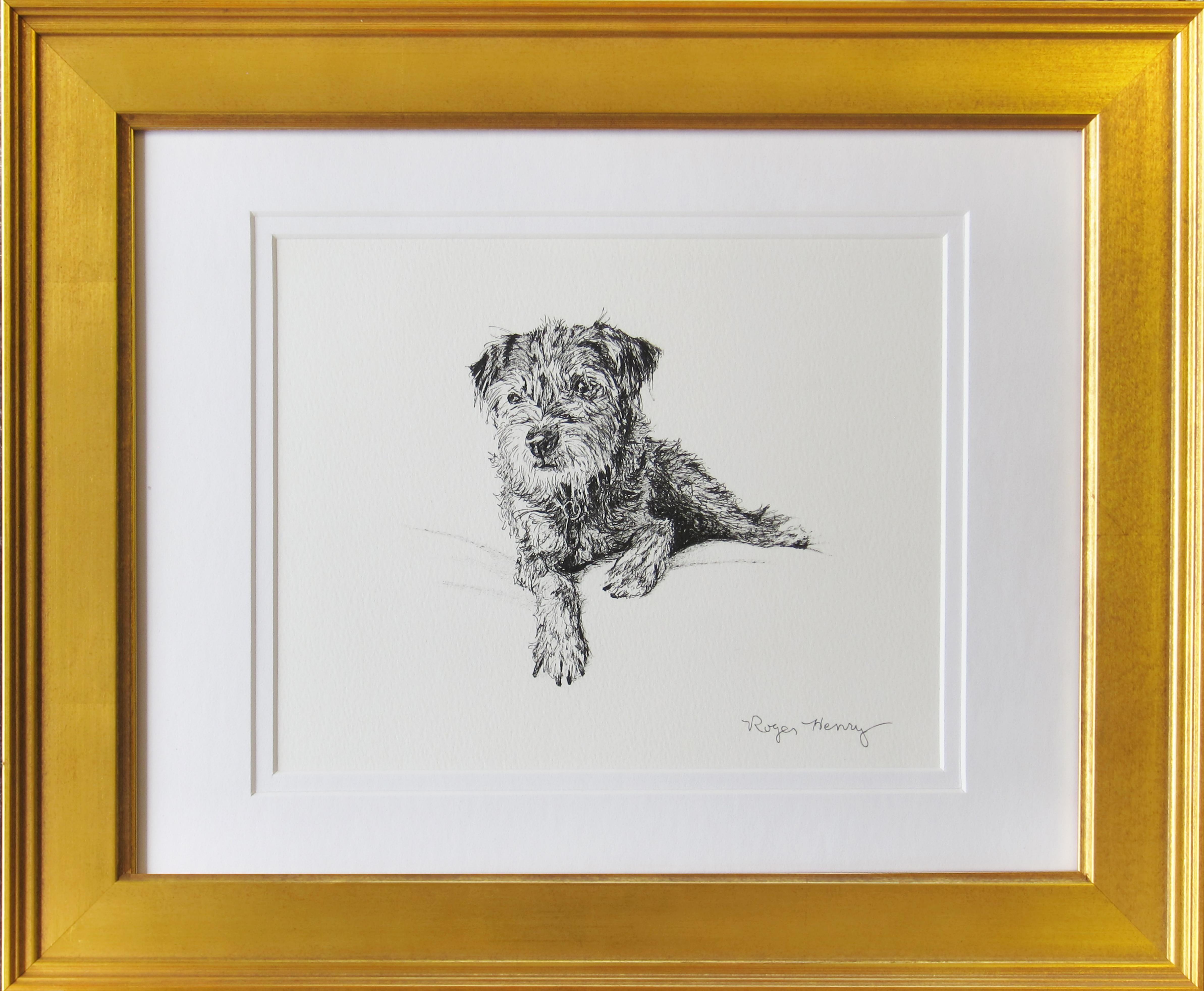 Tessie Border Terrier
