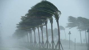 heavy winds.jpg