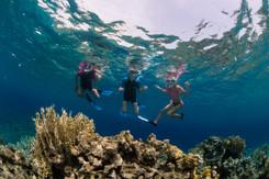 snorkeling_sub-034-_dsc9806.jpg