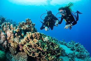 divingcenter_subacquee-031-_dsc0511.jpg