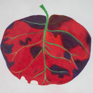bright red leaf.jpg