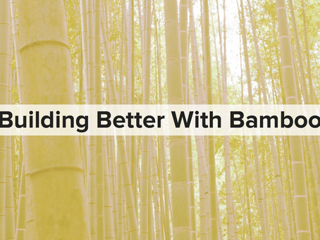 Building Better With Bamboo