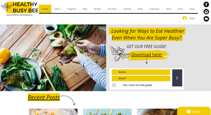 Healthy Busy Bee