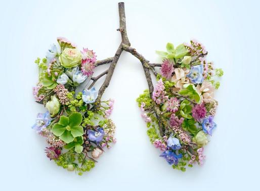 Fortaleça o sistema respiratório e tenha mais energia com essa prática feita em casa!