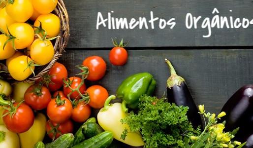 Alimentos Orgânicos: Por que e como escolhê-los?