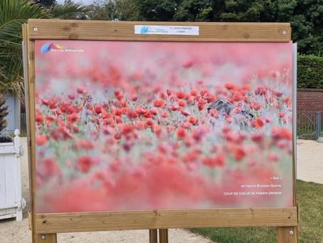 Festival Spot Nature 2021 aux Jardins suspendus du Havre