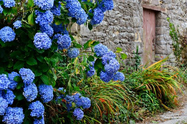 Ambiance bretonne.