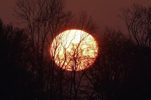 Lever de soleil en campagne