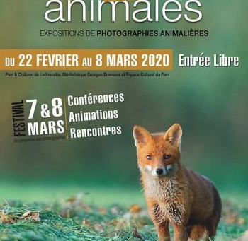 Festival Latitudes animales à DRANCY