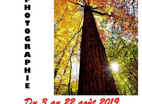 """Mon exposition """" Voyages immobiles"""""""