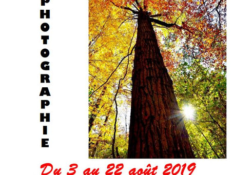 "Mon exposition "" Voyages immobiles"""